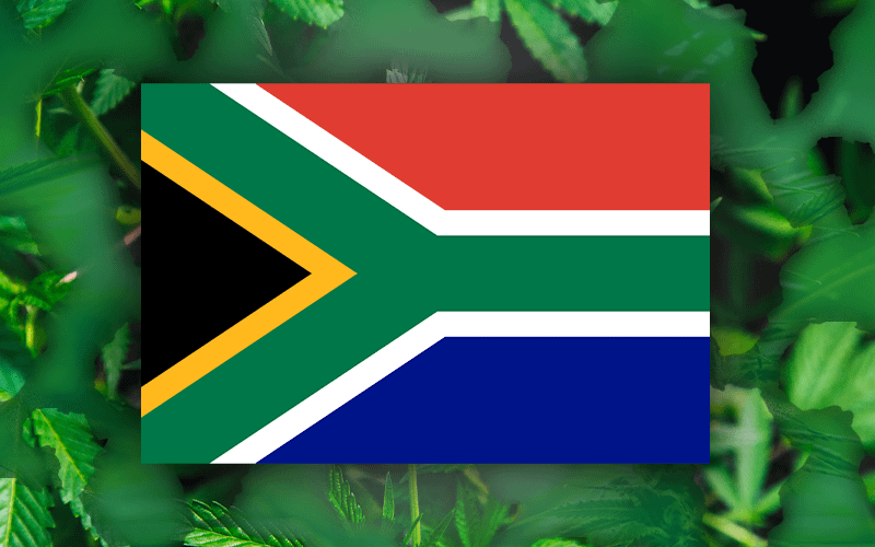 National Cannabis Master Plan;South Africa Cannabis License, SA Cannabis Personal Use Bill, SA Recreational Cannabis law, Legalize, Dagga News; SA Cannabis Tax 12J