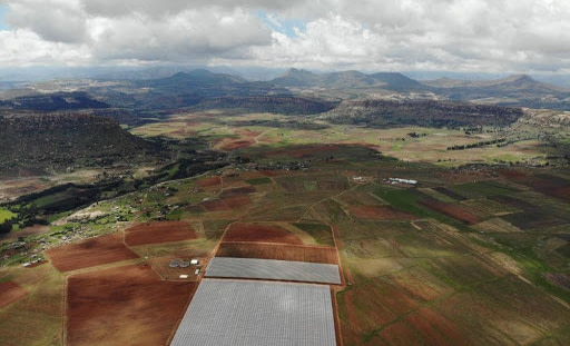 Lesotho Contract Cultivation Business