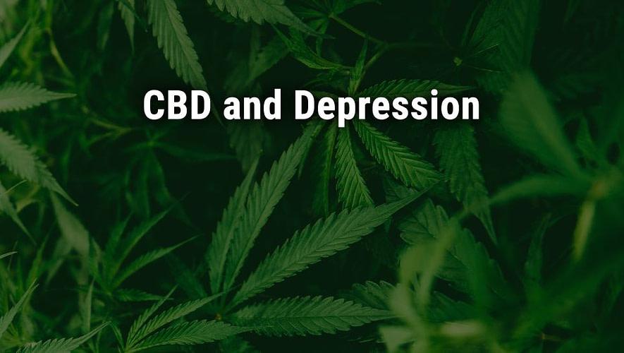 cbd and depression; cannabiz africa