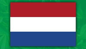 netherlands flag with weed, cannabis in netherlands, amsterdam coffee shop