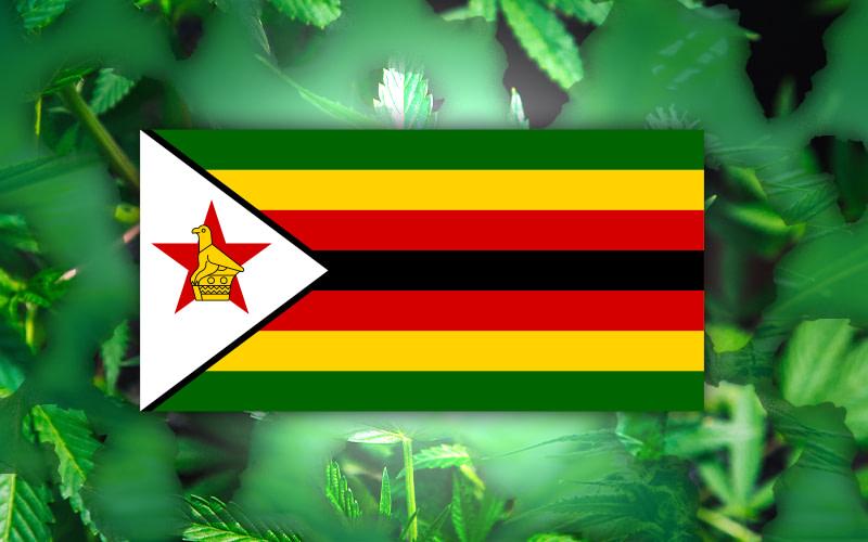 Zimbabwe hemp export Plans, Zimbabwe Flag,