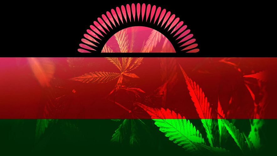 Malawi Cannabis License Fees