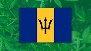Barbados Caribbean Cannabis, Barbados Local Finance Mechanism