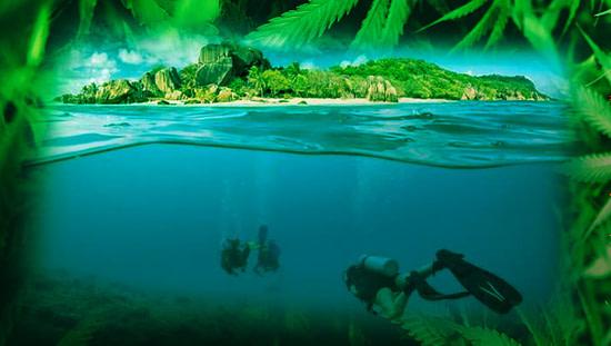 Seychelles Cannabis Tourism