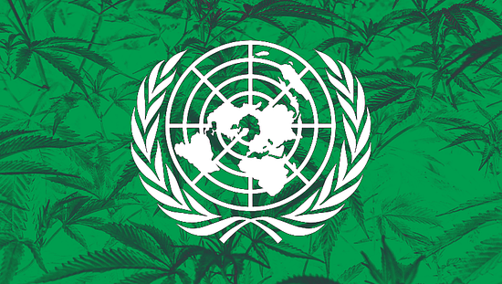 UN cannabis ruling, marijuana Legalization, Cannabis News, Cannabiz Africa