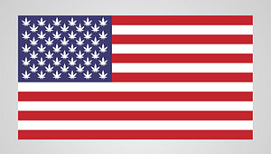 US federally legalize weed, US cannabis reform, us congress marijuana vote