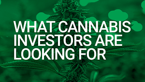 Attracting Cannabis Investors