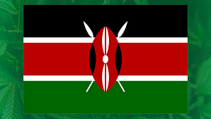 "Kenya pours cold water on cannabis reform, calls investor a ""lunatic""."