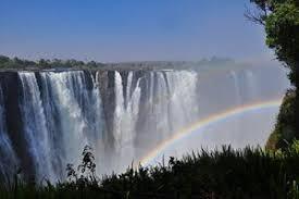 Zimbabwe Cannabis Licence Info