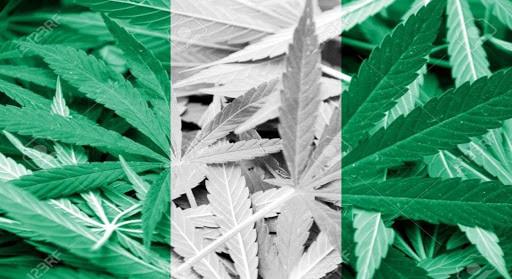 Nigeria Legalize Medicinal Cannabis, Nigeria Cannabis Reform