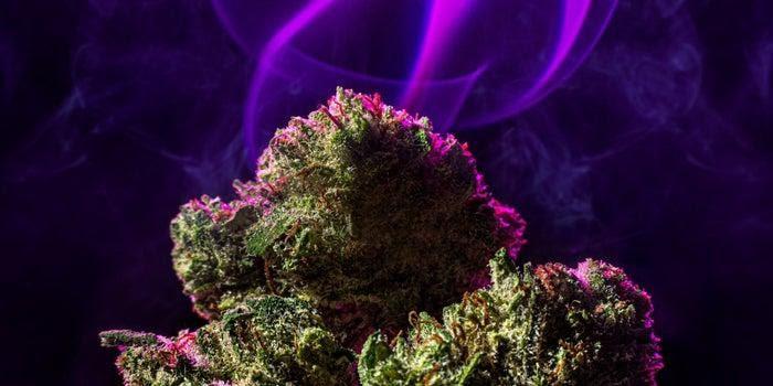 Cannabis Strain Names Meaningless