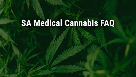 SA Medical Cannabis FAQ; cannabiz africa