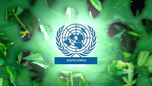 United Nations South Africa, Cannabis Africa, Marijuana News