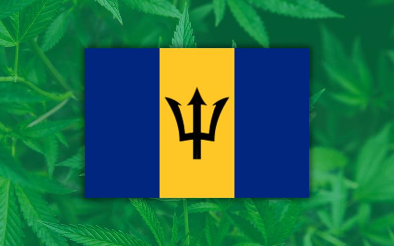 Barbados Caribbean Cannabis, Barbados Local Finance Mechanism