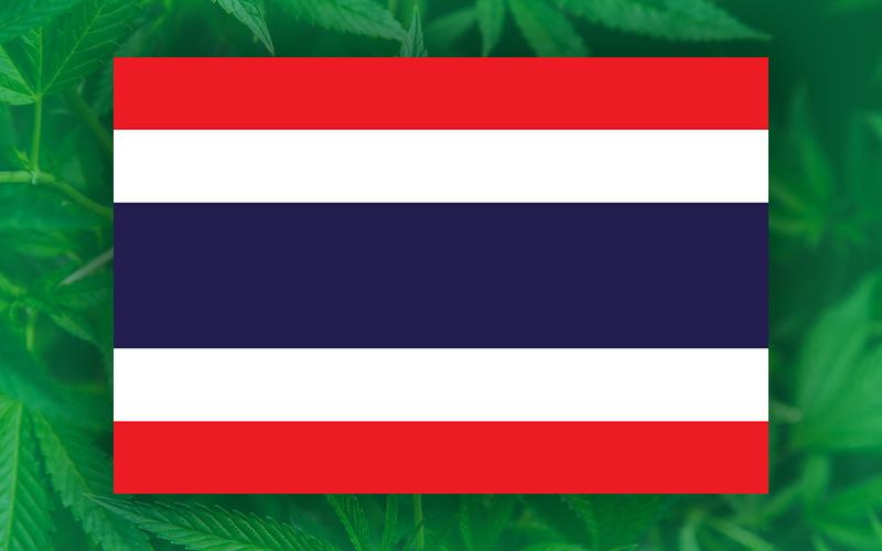 thailand flag cannabis leaves, thai cannabis